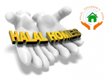 bits by babo homes halalx